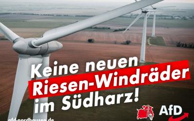Keine Riesen-Windräder im Südharz!